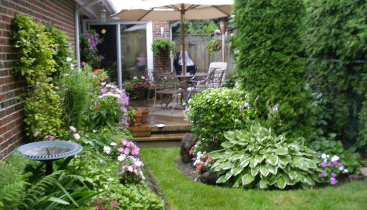 invigorate your lovely yard